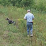 Obedience Training and Field Work