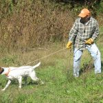 Training the Hard Dog