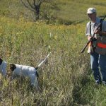 Pointing Dog Pointer: The Nuts and Bolts of Starting Your Pointer Pup